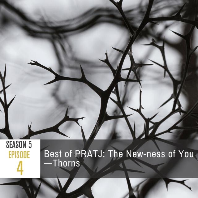 pratj-season-5-episode-4-episode-image-
