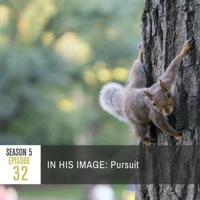 pratj-season-5-ep-32-web