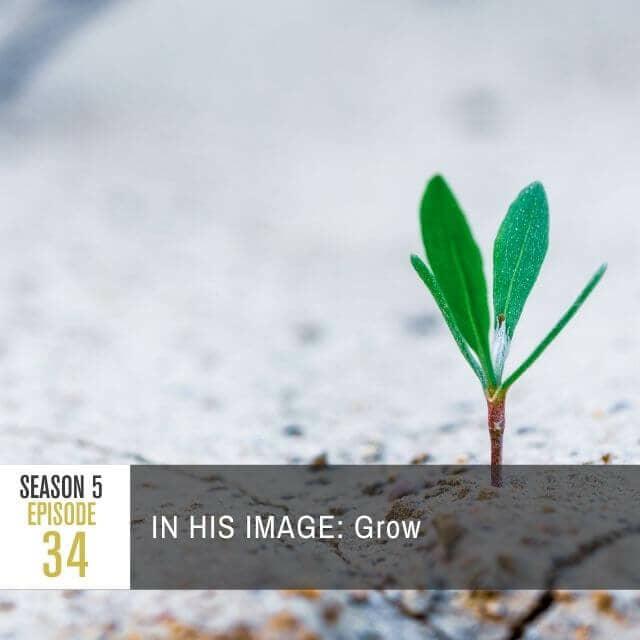 pratj-season-5-ep-34-image-web